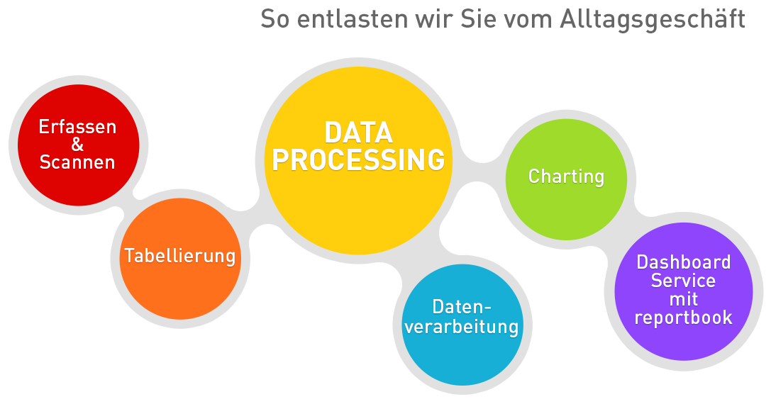 Die mehrfarbige Grafik zeigt 6 zusammenhängende Kreise für die 6 Services Scannen, Erfassen, Codierung, Tabellierung, Datenverarbeitung und Charting